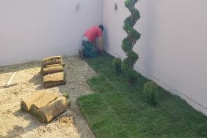 Smaragd travnik uređenje dvorišta zenica 13