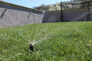Smaragd travnik uređenje dvorišta zenica 18