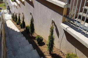 Smaragd travnik uređenje dvorišta zenica 2