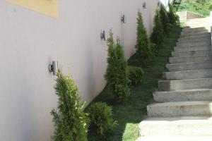 Smaragd travnik uređenje dvorišta zenica 3