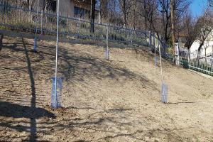 Smaragd travnik uređenje dvorišta zenica 6