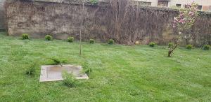 postavljanje busjena travnik 11