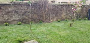 postavljanje busjena travnik 15