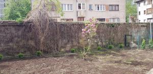 postavljanje busjena travnik 8