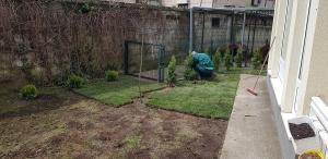 postavljanje busjena travnik 9