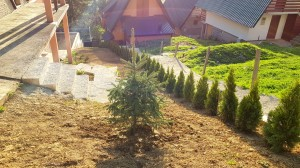 smaragd travnik vlasic 7