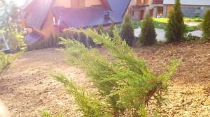 smaragd travnik vlasic 9