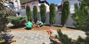 travnik vrt 2