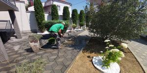 travnik vrt 3