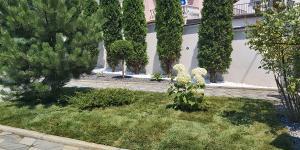 travnik vrt 9